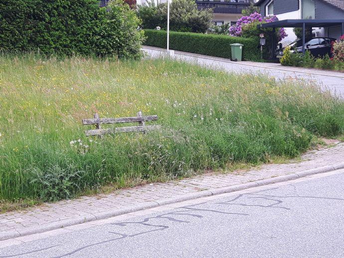 ***Super Lage - ruhig und doch zentral - Baugrundstück direkt in Gras-Ellenbach***