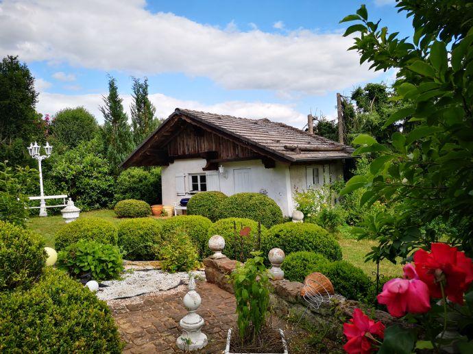 Für Natur - und Gartenliebhaber, zentrale / helle / großzügige 2-Zimmer-Wohnung in Fulda zu vermieten