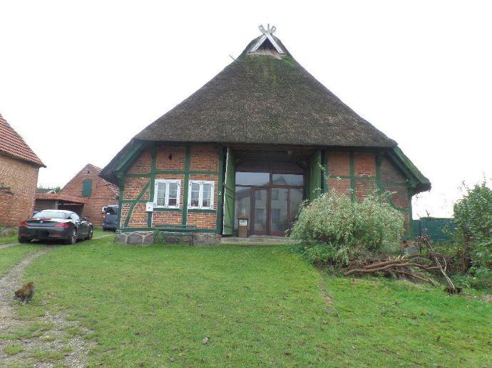 Einmalig, Denkmalgeschütztes Haus unter Reet, mit herrlicher Koppel