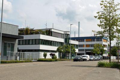 Esslingen Halle, Esslingen Hallenfläche