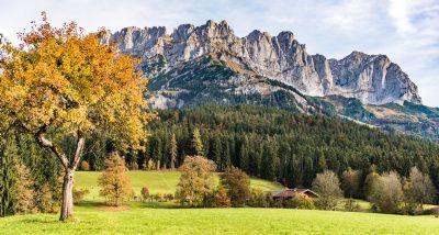 Scheffau am Wilden Kaiser Grundstücke, Scheffau am Wilden Kaiser Grundstück kaufen