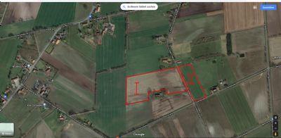 Wagenfeld Bauernhöfe, Landwirtschaft, Wagenfeld Forstwirtschaft