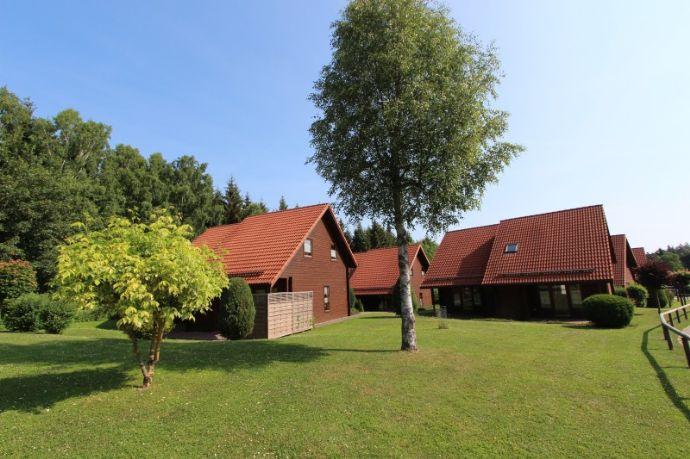 Ferienhaus in Hasselfelde im Harz - Familienfreundliche Kapitalanlage jetzt im Angebot