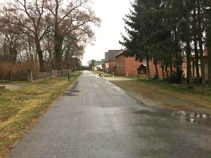 -Beeskow/Oegeln/ Sanierungsobjekt- Gutshaus mit Wald- und Baugrundstück-