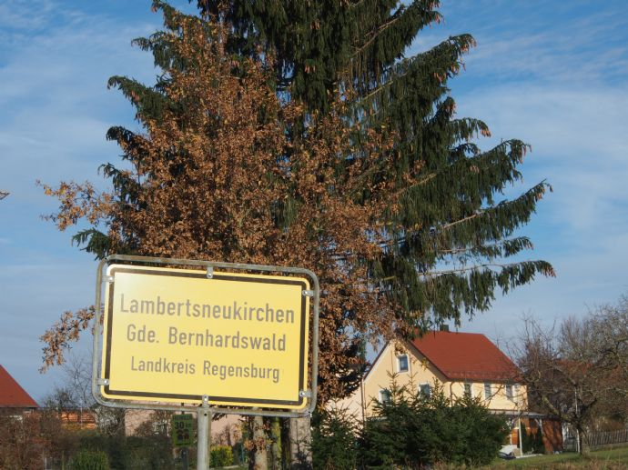 DOPPELHAUSHÄLFTE N ZUM VERLIEBEN - in Bernhardswald-Lambertsneukirchen