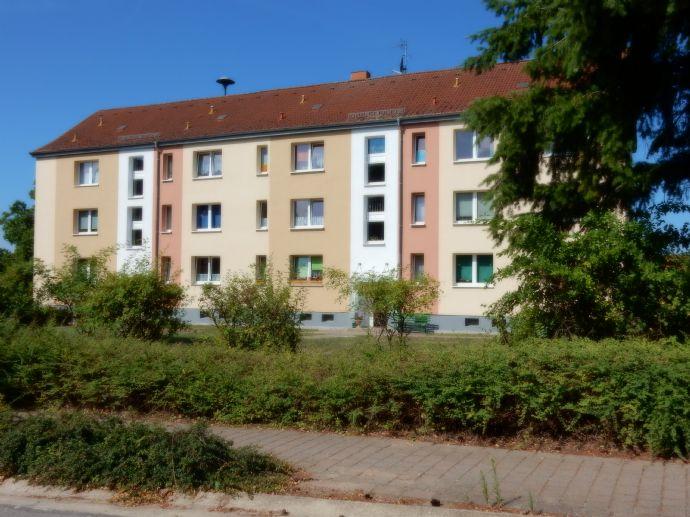Kleines Wohnparadies - 3-Zimmer-Wohnung mit Tageslicht-Wannenbad