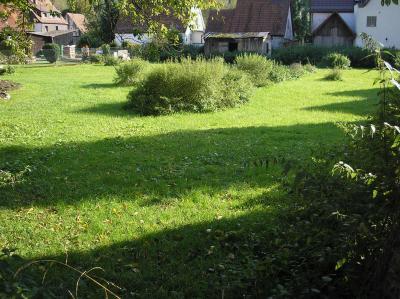 Bild vom Grundstück