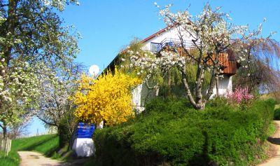 Ferienhaus Honigschlecker