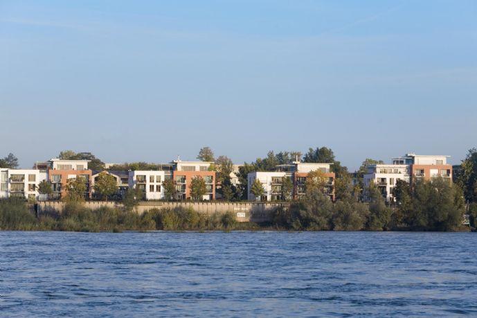Helle klare Gartenwohnung in sensationeller Lage direkt am Rheinufer Sürth
