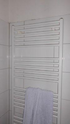 Handtuchhalterheizkörper