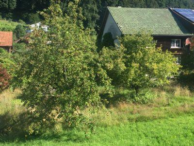 Berneck Grundstücke, Berneck Grundstück kaufen
