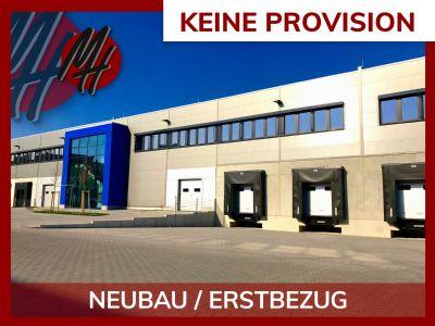 Weilburg Halle, Weilburg Hallenfläche