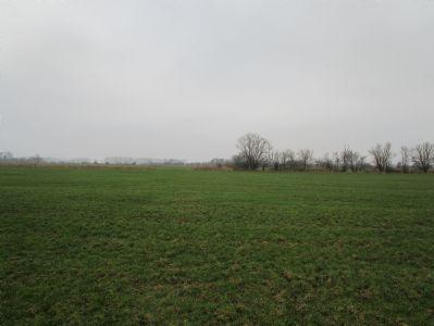 Grömitz Bauernhöfe, Landwirtschaft, Grömitz Forstwirtschaft