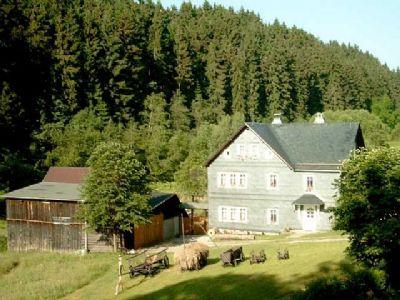 Fam. Griebel - Gemütliche kleine Ferienwohnung in Böhlen