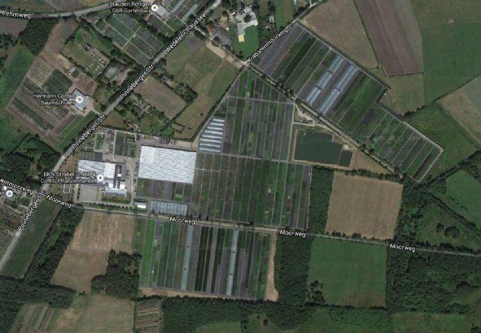 Gärtnereibetrieb mit umfangreichem Grundbesitz