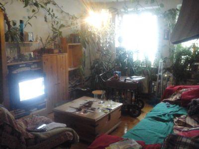 Begr Nte Altbau Oase Mit Balkon Wohnung Neu Ulm 2cj8v42