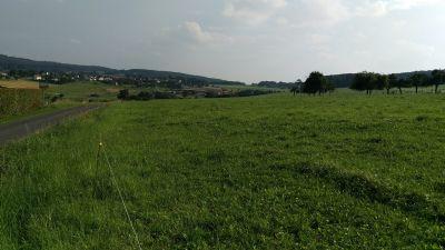 Rheinbach Grundstücke, Rheinbach Grundstück kaufen