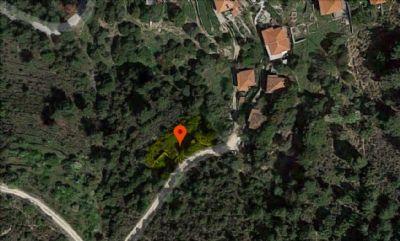 Thassos Bauernhöfe, Landwirtschaft, Thassos Forstwirtschaft