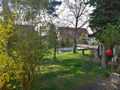 07-Blick-in-den-Garten