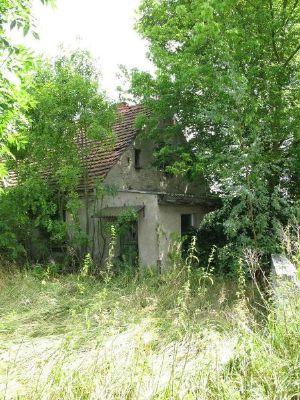 Sanierungsbed rftiges 3 familienhaus 60km von berlin for Familienhaus berlin