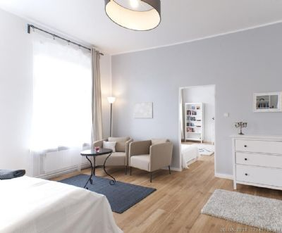 m blierte 1 5 zimmer wohnung in zentraler lage. Black Bedroom Furniture Sets. Home Design Ideas