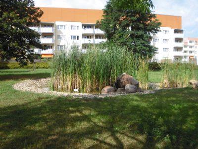 Parkanlage mit Biotop