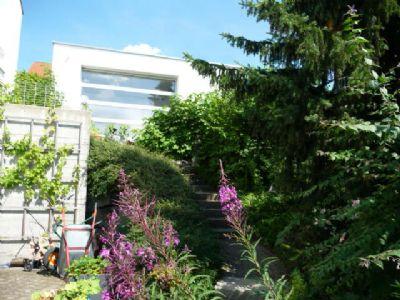 Blick zum Carport vom Garten