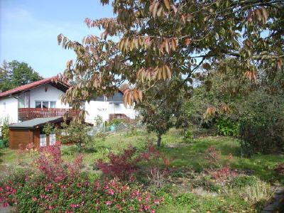 ebenerdiges Grundstück mit Gartenhaus, Bad Marienberg Nähe