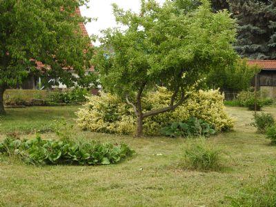 Tolles Grundstück - großer Garten - Doppelhaushälfte 130 m² Wfl. .