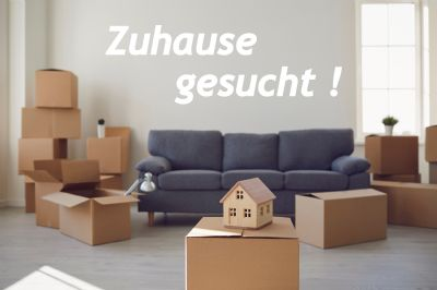 Nohfelden Häuser, Nohfelden Haus kaufen