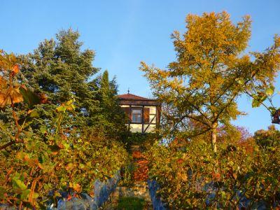 Bad Sulza Häuser, Bad Sulza Haus kaufen