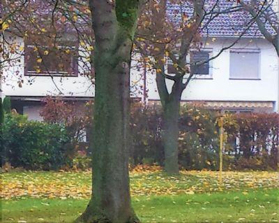 Wilhelmsthal Häuser, Wilhelmsthal Haus kaufen