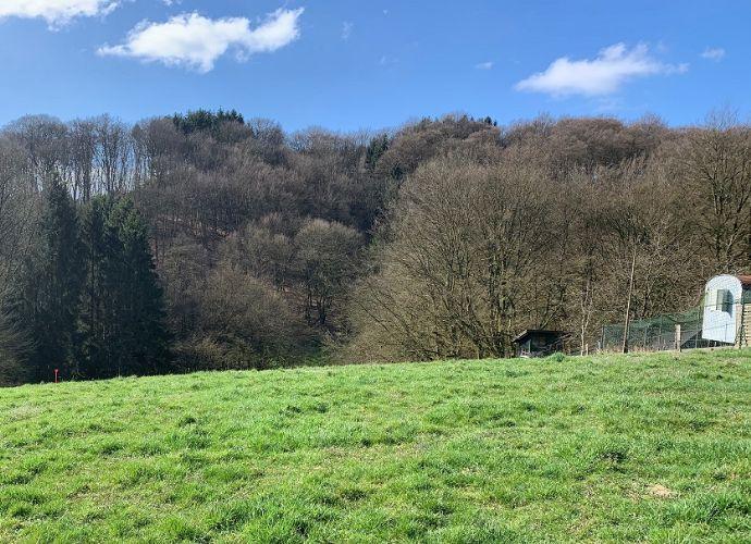 Baugrundstück, 2600 qm, in Kürten-Waldmühle/Hachenberg! Keine Architekten/Bauträgerbindung