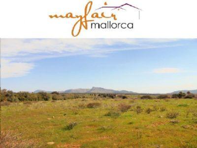 Son Serra de Marina Grundstücke, Son Serra de Marina Grundstück kaufen