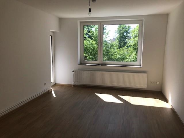 Home-office-tauglich - frisch sanierte 3-ZW + Balkon - konktaktlos besichtigen - Rohrsen/Basberg