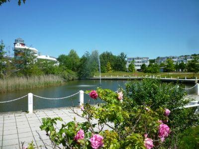 Last - Minute kleines günstiges Appartement in Sellin 800 m zum Strand  weitere Angebote und Ferienwohnungen siehe Homepage.