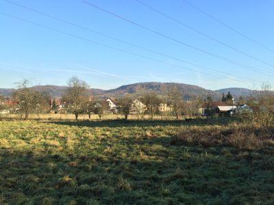 Sicht in Richtung Rothenberg (Westansicht)