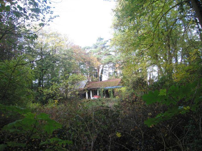 Baugrundstück für ein Einfamilienhaus in Waldlage mit Altbestand...