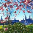Hochwertige Dreiraum für Ihren Start in Dresden gewünscht ?