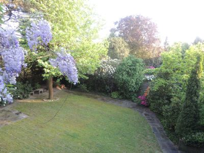 Der Garten ....