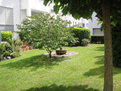 Blick in den Garten und auf Ihre Terrasse (links)