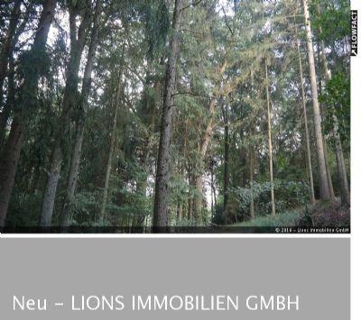 Waldbestand