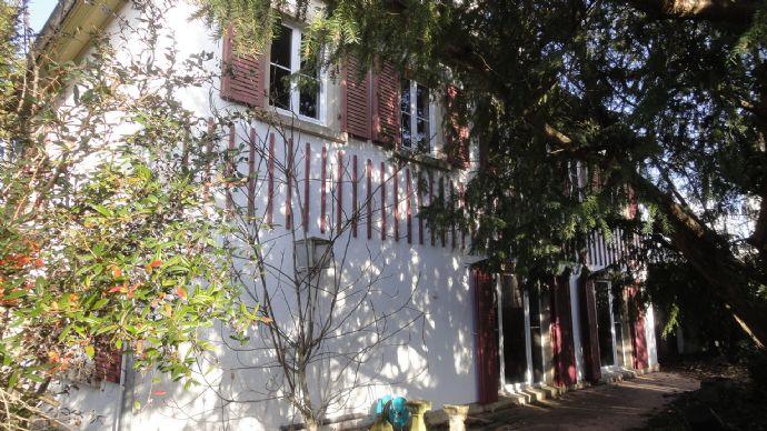 10 - Zimmer - Villa im Musikerviertel Worms-West