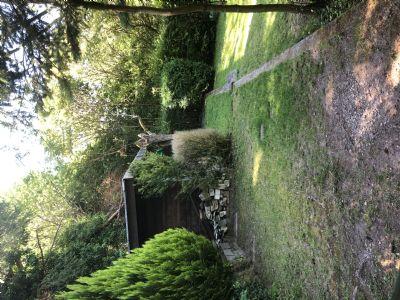 Gartengrundstück mit Waldanteil Nähe Herrmannsee