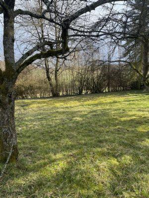 Reiskirchen Grundstücke, Reiskirchen Grundstück kaufen