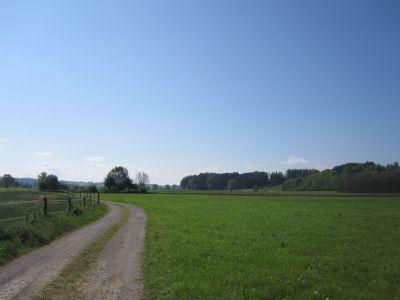 Blick nach Süden an östlichem Feldweg