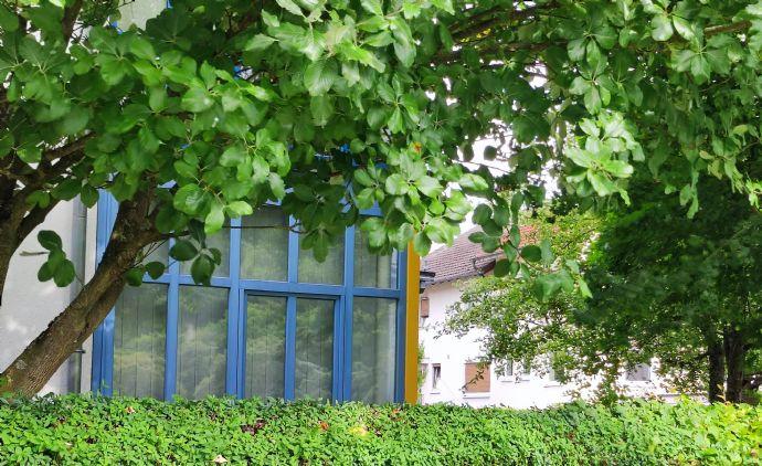 Tolle 2-Zi -Wohnung mit Terrasse