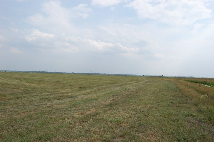Weidefläche in Sandstedt