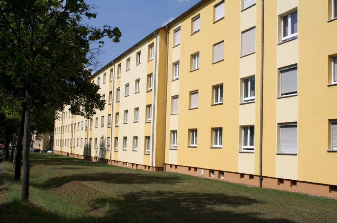 Wohnen am Rand der Pirnaer Altstadt - 2-Raum-Wohnung