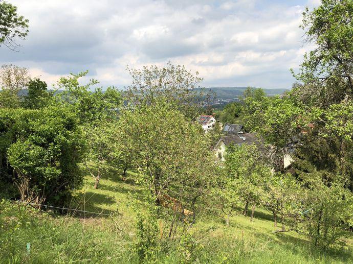 Baugrundstück mit positiver Bauvoranfrage für ein Einfamilienhaus in Jena Ost